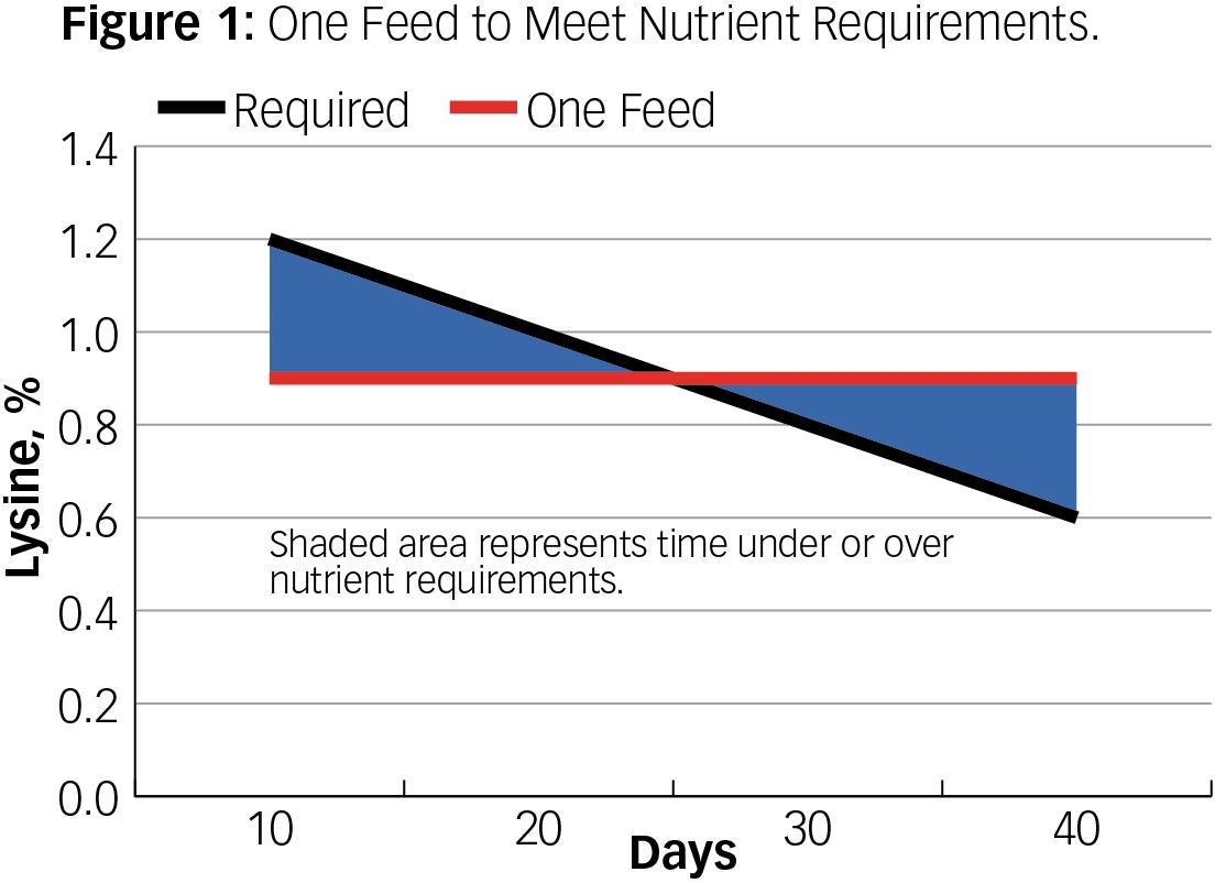 Benefits of Phase Feeding | Wenger Feeds
